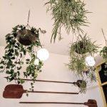hanging planters, retail